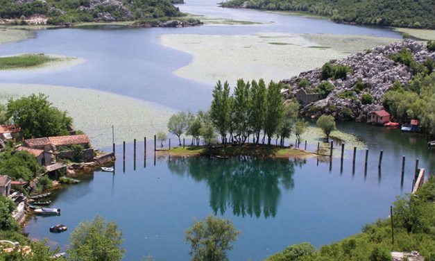 Skadar – a city on the lake