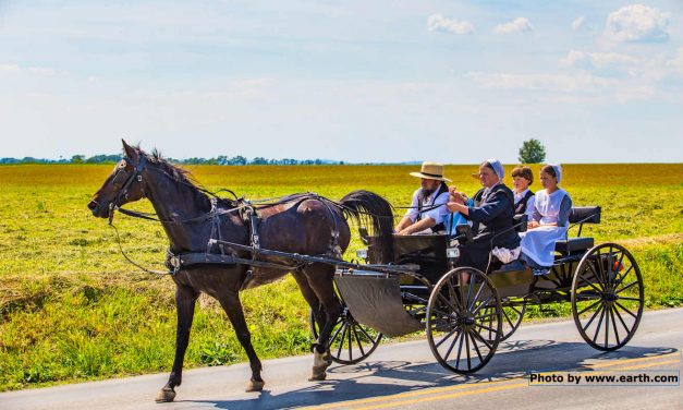 12 things we could learn from Amish parents